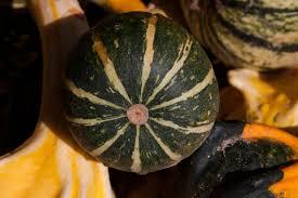 free images plant fruit orange green produce vegetable
