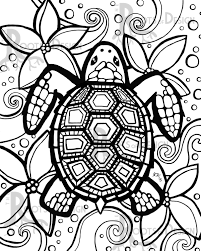 turtle coloring pages for adults eson me