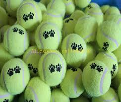 200pcs lot cheap tennis balls run catch throw play