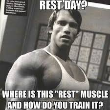 Arnold Gym Memes - rest day never heard of her 6 tired excuses for not going to the