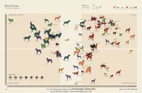 Types Of Dogs This Map Wants To Answer The Unanswerable Which Dog Breed Is The