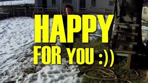 happy for you from lyon pharrell williams