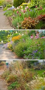 garden design with flower ideas pictures beautiful flowers