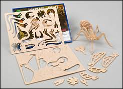 wooden dinosaur insect kits valley tools