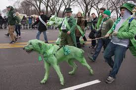 everything to eat drink and do this st patrick u0027s day in chicago