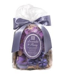 halloween perfume for women home home decor dillards com
