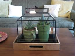 Terrarium Coffee Table by Green House Good Life Succulent On This