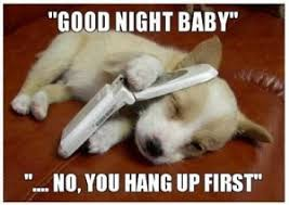 Cute Memes - hilarious good night meme