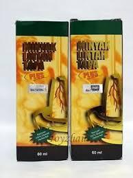2 minyak lintah tapa plus leech oil 60ml ebay