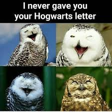 White Owl Meme - the best hogwarts memes memedroid