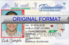 fake id id fake id novelty fake id tennessee fake id and fake id