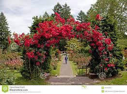 top international rose test garden portland or decor modern on