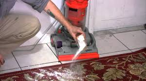 What Do Exterminators Use To Kill Bed Bugs How To Kill Bed Bugs With Baking Soda Mixture Youtube