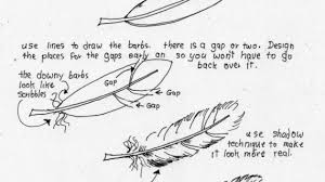 how to draw a feather wanna draw a feather how to draw a feather