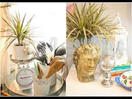 indoor plants creative plant terrarium ideas youtube