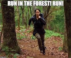 Run Forrest Run Meme - run forest run imgflip