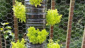 tips on building a vertical garden out of plastic bottles my