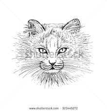detailed vector my pen ink drawing stock vector 122106325