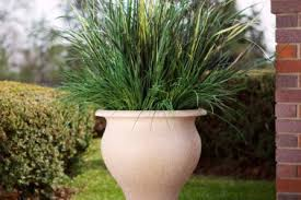 17 ideas for large plant pots 10 ideas for large garden