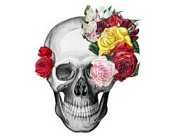 vintage skull and roses by rococcola etsy skull