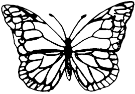 butterfly templates clip art library