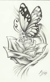 3d butterfly pencil sketch butterfly 3dazorica3 on deviantart