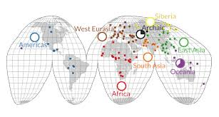 dna mapping ancestral humans had more dna science
