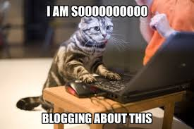 Meme Blogs - can you really trust a beauty blogger beautyeditor