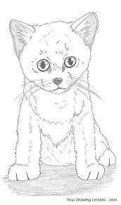 draw kitten u2013 drawing lessons
