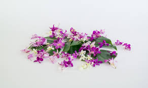 Orchid Cut Flowers - loose orchid blooms fresh hawaiian orchids