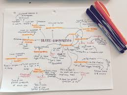 Mind Map Examples Mind Map Of The Circulatory System Education Mind Map Examples