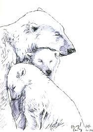 polar bear sketch by silvercrossfox on deviantart