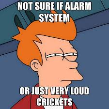 Crickets Meme - not sure if alarm system or just very loud crickets create meme