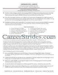 Summary Examples For Resume by It Resume Example Sample Cio Resumes Resume Cv Cover Letter