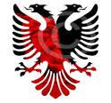 albanian eagle foto