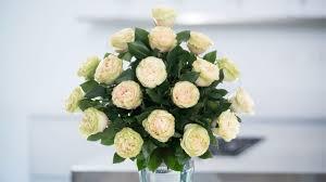 Green Garden Roses Spring In The Air