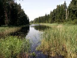 Windawski Canal