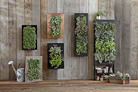 vertical garden design hgtv