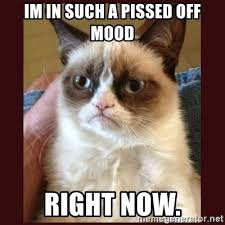 Pissed Off Meme - im in such a pissed off mood right now tard the grumpy cat