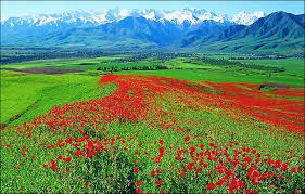 kingdom cold 14 reasons choose majestic yakutia