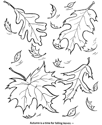 fall leaf outline coloring home