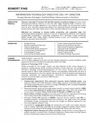 Cio Resume Examples by Best Cio Resume Example Augustais