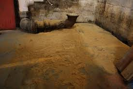 a basement bathroom renovation merrypad