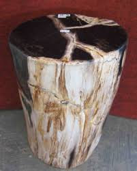 petrified wood end table petrified wood is always a conversation started bedroom