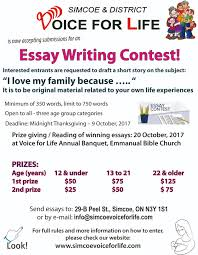 voice for essay writing contest