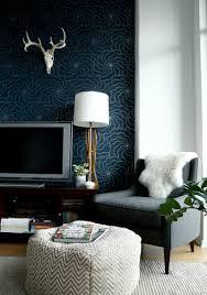 dark colored walls home design ideas