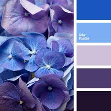 Colors Of Purple 38 Best Wedding Board Images On Pinterest Marriage Outdoor