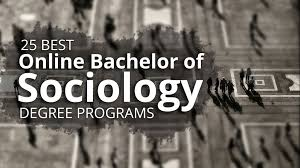 the 25 best online bachelor of sociology degree programs the