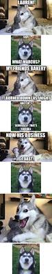 Pun Dog Meme - so punny memes dog and animal