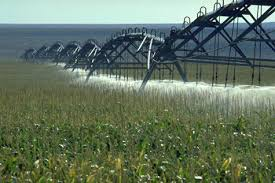 irrigated corn features of the encirca sm yield water management service